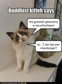 Buddhist kitteh says: the greatest generosity is non-attachment — so… I can has your cheezburger?